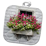 3dRose Roni Chastain Photography - Pink fowers by The Window - 8x8 Potholder (PHL_295334_1)