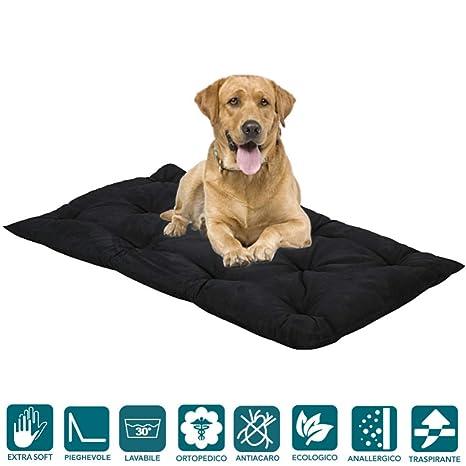 evergreenweb – Cama para Perros Lavable Alto 8 cm, colchón Multiusos – caseta para Perro