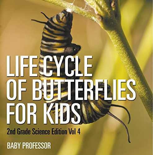 Life Cycle Of Butterflies for Kids | 2nd Grade Science