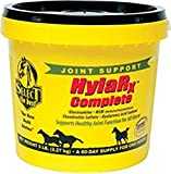 RICHDEL 784299600508 Hylarx Complete Joint Support for Horses, 5 lb