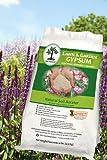 Lawn & Garden Gypsum 10lb For Sale