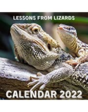 Lessons From Lizards Calendar 2022: September 2021 - December 2022 Monthly Planner Mini Calendar With Inspirational Quotes