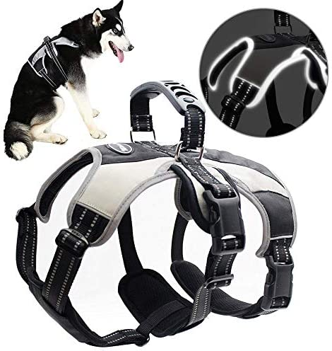 Mihachi-Secure-Dog-Harness---Escape-Proof-Reflective-Dogs-Vest
