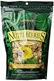Image of Lafeber's Gourmet Tropical Fruit Nutri-Berries for Conures 10-Ounce Bag