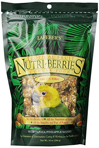 Lafeber's Gourmet Tropical Fruit Nutri-Berries for Conures 10-Ounce Bag And S Berry