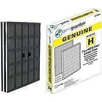 GermGuardian Air Purifier Filter FLT9200 GENUINE True HEPA Replacement Filter H for AC9200WCA Germ Guardian Air Purifier