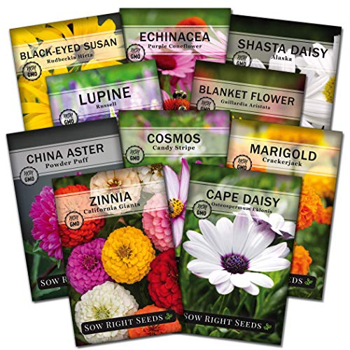 Sow Right Seeds - Flower Garden Seed Collection - Coneflower, Marigold, Zinnia, Cosmos, Cape Daisy, Aster, Lupine, Black-eyed Susan, Shasta Daisy, and Blanket Flower; Heirloom Seeds for Planting