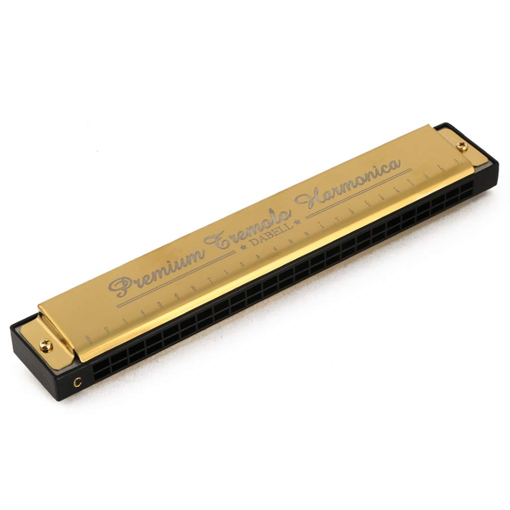 DZXM Harmonica 24 Holes Polyphony C Tone Adult Child Professional Performance Musical Instrument,Gold