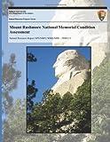 Mount Rushmore National Memorial Condition Assessment, National Park National Park Service, 1492715042
