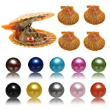 Akoya Oysters with Pearls Inside, 10PC Saltwater Cultured Love Wish Round Red Pearl Oyster with Mixed Color (7-8mm)
