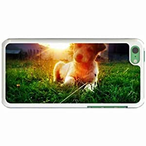 Lmf DIY phone caseCustom Fashion Design Apple iphone 6 plus inch Back Cover Case Personalized Customized Diy Gifts In A nap WhiteLmf DIY phone case1