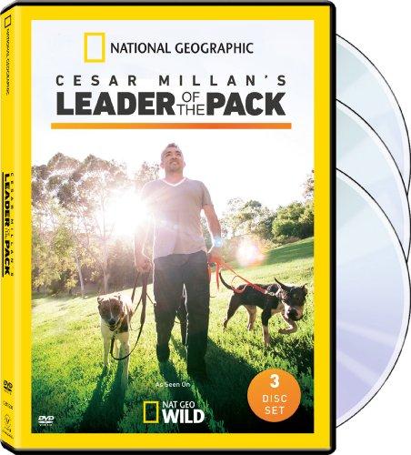 Cesar Millan: Leader / Pack Sn 1 (Cesar Millan People Training)