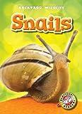 Snails, Margo Gates, 1600149200