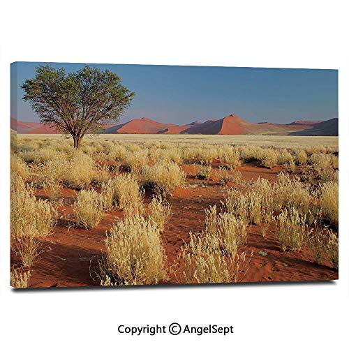 (Home Decoration Painting Wall Mural Acacia Tree Desert Sossusvlei Namibia Southern Africa Photo Living Room Dining Room Studying Aisle Painting,16