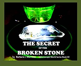 The Secret of the Broken Stone (The Microscopic World Series Book 2)