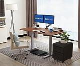 Flexispot E2S Electric Height Adjustable Desk