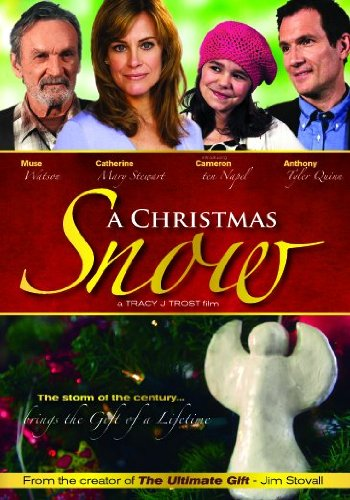 Amazon.com: A Christmas Snow: Catherine Mary Stewart, Muse Watson ...