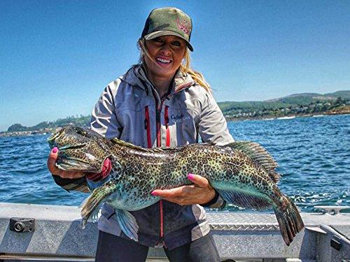 Catching Sea Bass -
