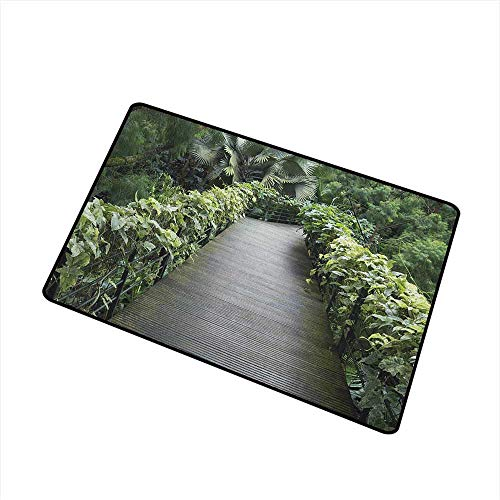 Wang Hai Chuan Asian Welcome Door mat Scenic Wooden Pathway in Singapore Botanical Garden Fence Rainforest Tropical Door mat is odorless and Durable W23.6 x L35.4 Inch Fern Green Brown -