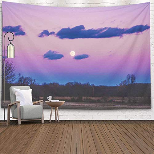 Fullentiart College Dorm Room Decor, Wall Art Living Room Bedroom Tapestry Moon Sun View Seasons Summer Fall Spring Winter Space Look up Dinning Room Wall Decor Cool Dorm Room Decor 80X60 Inches (Questions To Ask About The Moon Landing)
