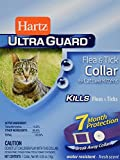 Hartz Mountain CHZ90745 F and T Cat Collar, 13-Inch, Purple by HARTZ