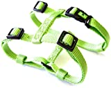 Hamilton Adjustable Comfort Nylon Dog Harness, Lime Green, 1″ x 40-50″, My Pet Supplies
