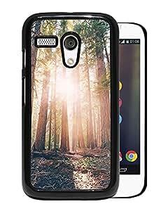 Sun Beams Through Trees Durable High Quality Motorola Moto G Phone Case
