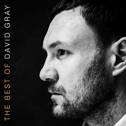 the-best-of-david-gray