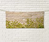 Anniutwo Brick Wall,Travel Towel,Ground Creepy Climbing Wood Ivy Plant Leaf on Brick Wall Nature Flower Invasion,Quick-Dry Towels,Green White Size: W 14'' x L 27.5''