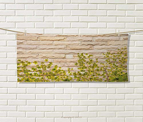 Anniutwo Brick Wall,Travel Towel,Ground Creepy Climbing Wood Ivy Plant Leaf on Brick Wall Nature Flower Invasion,Quick-Dry Towels,Green White Size: W 14'' x L 27.5'' by Anniutwo