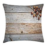 Ambesonne Rustic Throw Pillow Cushion Cover, Acorns and Cones on Weathered and Grained Wooden Background Timber Autumn Theme Image, Decorative Square Accent Pillow Case, 28 X 28 Inches, Brown