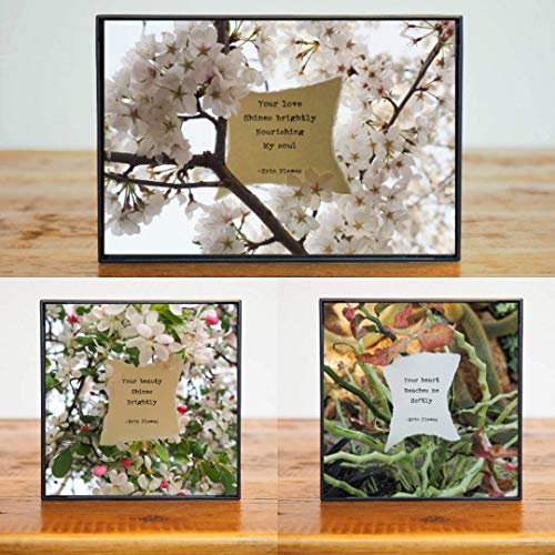 Inspirational Quote Love Poem Gift Set 3 Small Framed Photos Pink Flowers Green Leaves Nature Art