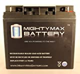 ML18-12 - 12V 18AH CB19-12 SLA AGM Rechargeable Deep Cycle Replacement Battery - Mighty Max Battery brand product