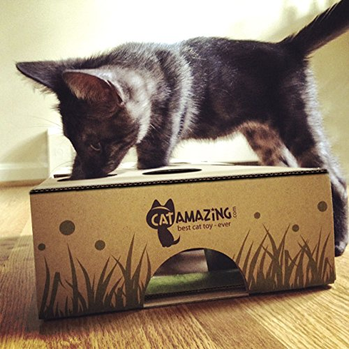 Cat Amazing – Best Cat Toy Ever! Interactive Treat Maze & Puzzle Feeder for Cats 8