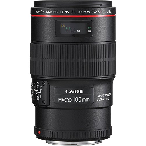 Canon EF 100mm f/2.8 L is Macro USM Lens with Ring Light + Tripod + 3 Filters Kit for EOS 80D, 6D, 7D, 5DS, 5D II III IV, Rebel T6, T6i, T6s, T7, T7i by Canon (Image #2)