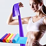 SHENGZW Flat Exercise Band Set of 5, Flat Resistance bands, Non-Latex Elastic Bands for Physical Therapy, Sport, Pilates, Stretch, Yoga, Strength Training