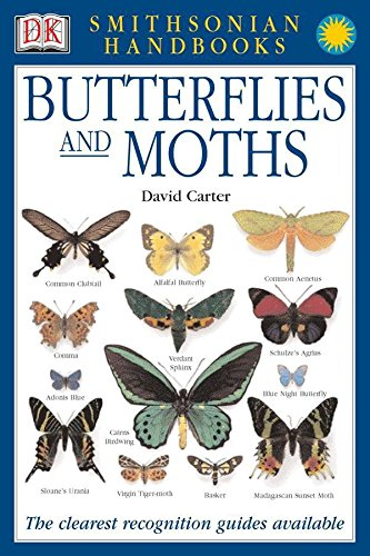 Handbooks: Butterflies & Moths: The Clearest Recognition Guide Available
