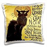 3dRose Vintage French Chat Noir Black Cat Art - Pillow Case, 16 by 16-inch (pc_99416_1)