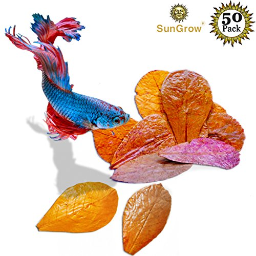 SunGrow Betta Leaves Replicate Natural Habitat for Betta & Improve Well-Being - Easy to use, add 1 Piece per Water Change (Mini (50-Pack))