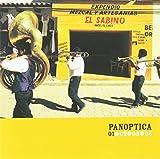 : Panoptica