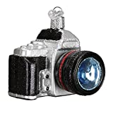 Photography Camera Glass Blown Hanging Christmas Ornament