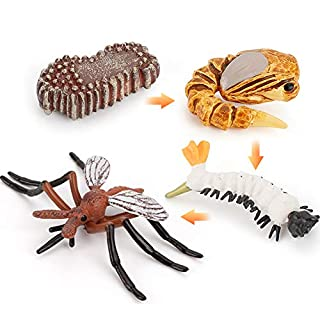 Fantarea 4 PCS Mosquito Animal Life Cycle Model Figure Insect Growth Model Figure Classroom Accessories Party Supplies Cake Toppers Learning Cognitive Toys for 5 6 7 8 Year Old Boys Girls Kid Toddlers