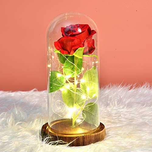 Rose, Best Gift for Mom,Red Rose with Light Enchanted Silk Rose in Glass Dome, Girlfriend, Wife, Never Fade Rose for Mother's Day, Anniversary, Birthday, Valentine's Day, Room Decor