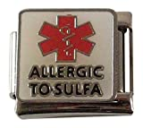 2 Allergic to Sulfa Medical ID Alert Italian Charms for Bracelet Allergy