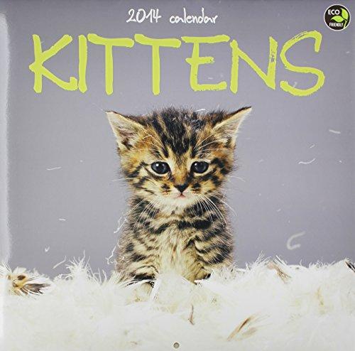 2014 Kittens Wall Calendar