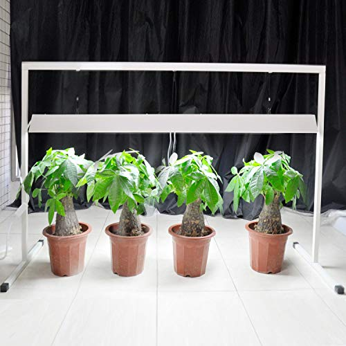 IPOWER T5 Grow Light