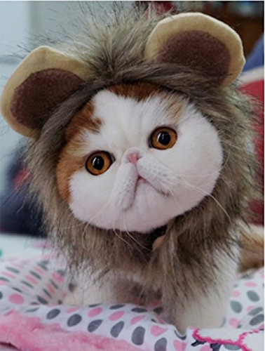 Per Realistic Pet Costume Lion Mane Wig Hat for Small Dog Cat and Puppy Kitten to Dress up -