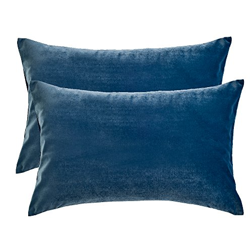 Artcest Set of 2, Cozy Solid Velvet Throw Pillow Case, Decorative Couch Cushion Cover, Soft Sofa Euro Sham with Zipper Hidden, 12
