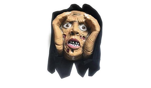 Kay un disfraz de Zombie del modo de la ventana de Katrina Creeper ...