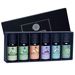 Lagunamoon Aceites Esenciales, Top 6 Set de Regalo de Aceites de Aromaterapia de Lavanda Eucalipto Hierba de Limón Menta… 51QAwxY 2BusL